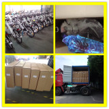 City Electric Bicycle For 20′ Container