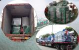 Saiou Shipping