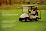 Dongfeng Golf Cart, the best golf cart from China!