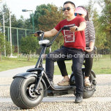 Hot sale 1000w motor Harley electric scooter with double seats