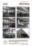 SGS Factory Audit