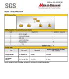 SGS Report -4
