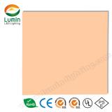 Trimless LED Panel Light