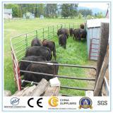 Metal Livestock Farm Fence/Fence Panel