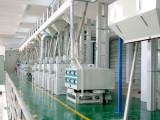 Our300 tons /d rice processing equipment in Guang Xi