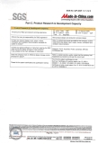 SGS Assessment Report (7 in 17 pages)