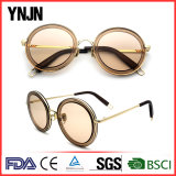 Fashion sunglasses(1317)