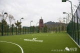 Fence System for Football Pitch 2014 APEC Avenue