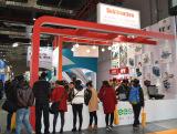 Shanghai Exhibition 1