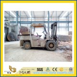 Forklift China Stone Factory from YeYang Stone Factory -FuJian YuanHong Construction Materials