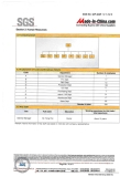 SGS Assessment Report (4 in 17 pages)