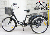 three wheels electric bike