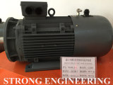 Inverter efficiency motors