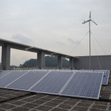 3KW wind solar hybrid system installed in Zhanjiang, China.
