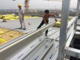 The installation on construction site project of South America standard steel building