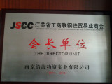 The Director Unit