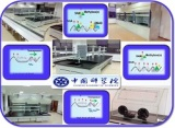 The Chinese Academy of Sciences project