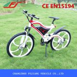 Two Wheel Electric Bicycle with Magnesium Integrated Wheel