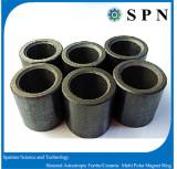 Ferrite isotropic multipole magnet rings