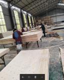 Poplar veneer composed of plywood