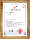 Letters Patent for Optical Sorting Machine