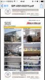 SGS audited paper-2