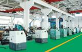 Production line in JIangsu Dongfang Company