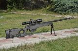 Siegfried 3-12x50