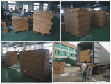 ChuangGao Exhibition ( Loading into 40′Container)
