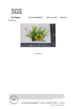 KIndergarten artificial grass withour heavy metls certificated by SGS