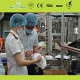 QC At workshop