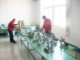Lab Photo 4