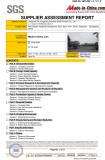 SGS- AUDIT-REPORT