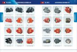 catalog of pump