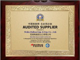 audited by made in China