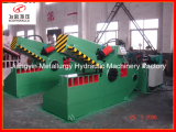 Q10-250A Automatic Sheet Shear Cutting Machine