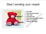 Step1: Sending your request