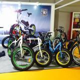 Exhibition ebike show