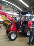 Germany customer check wheel loader