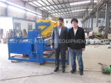 India customer come to visit wire mesh welding machine in roll