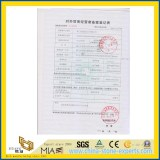 Yeyang Stone Factory Trade Capacity License Photo with NO 01182232