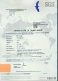 CE of Diesel FORKLIFT