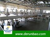 DERUNBAO workshop 1