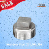Stainless Steel Plug, Pipe Fittings Plug, Plug
