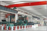 3PE/3PP COATING PIPE LINE