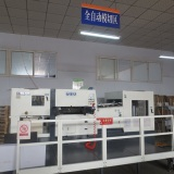 Fully automatic die-cutting machine
