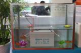 Yangzhou renewable energy show