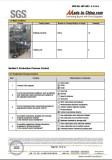 SGS Audit 10
