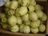 New Crop Pear