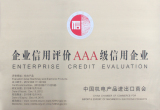 AAA Enterprise Credit Evaluation